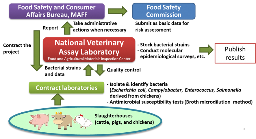 Figure 2. System for antimicrobial resistance monitoring in healthy food-producing animals at animal and poultry slaughterhouses