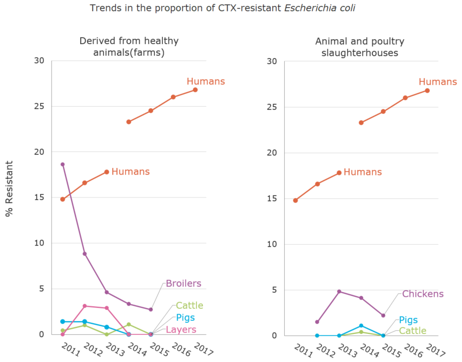 Trends in the proportion (%) of CTX-resistant Escherichia coli[the proportion of antimicrobial resistance in humans and animals]