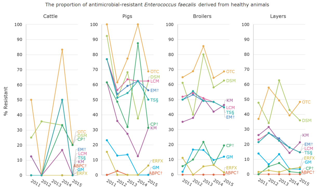 The proportion (%) of antimicrobial-resistant Enterococcus faecalis derived from healthy animals[the proportion of antimicrobial resistance in animals]