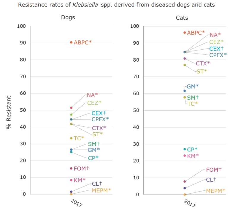Resistance rates of Klebsiella spp. derived from diseased dogs and cats (%)[the proportion of antimicrobial resistance in animals]