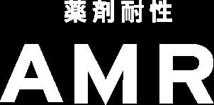 薬剤耐性AMR